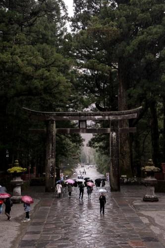 le torii au sanctuaire Toshogu à Nikko