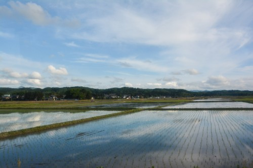 la vue du bus pour arriver à la ferme où l'on va apprendre à planter du riz près de Murakami