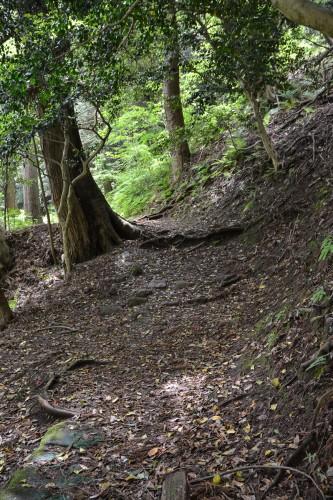 le chemin pour accéder au temple Hakogata Hachimangu Shaso à Gatsugi dans la préfécture de Niigata