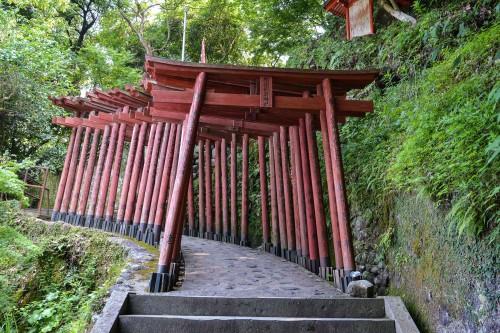 Le sanctuaire Yūtoku Inari dans la ville de Kashima, préfecture de Saga avec les beaux torii