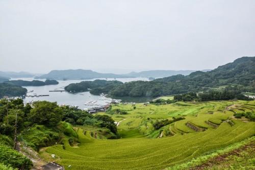 Les rizières en terrasse Oura Tanada dans la préfecture de Saga, sur l'île de Kyshu au Japon