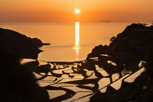 Les rizières en terrasse de Saga au coucher du soleil, au printemps