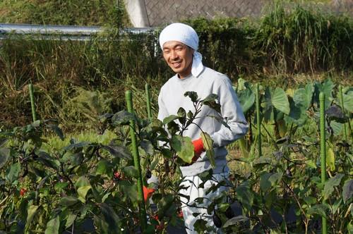 Masayoshi aux champs, dans la péninsule de Kunisaki, à Oita, Kyushu