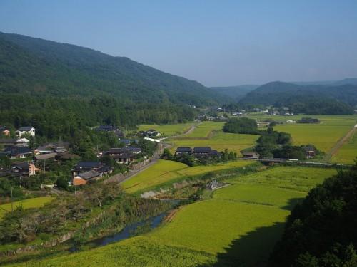 Une vue sur les rizières Tashibunoshou depuis l'observatoire de Yuhi Kan-non à Oita, Kyushu