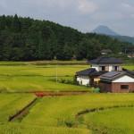 Les paysages à couper le souffle de Bungotakada