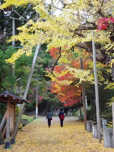 Himi, Mer du Japon, Japon, Temples, Koyo, Automne, Gingko
