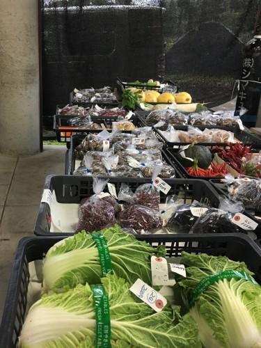 Yamakoshi, écotourisme, agriculture, Japon, Niigata, marché