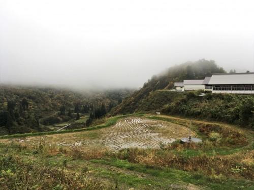 Yamakoshi, écotourisme, agriculture, Japon, rizière