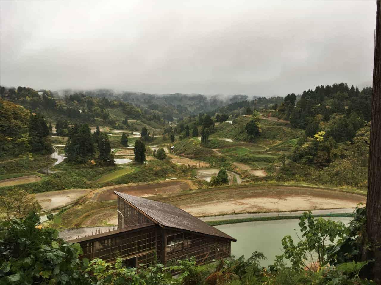 Le temps d'un écotour local dans la région de Yamakoshi