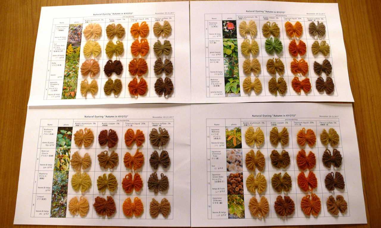 Fixer les couleurs de l'automne à la Kawashima Textile School