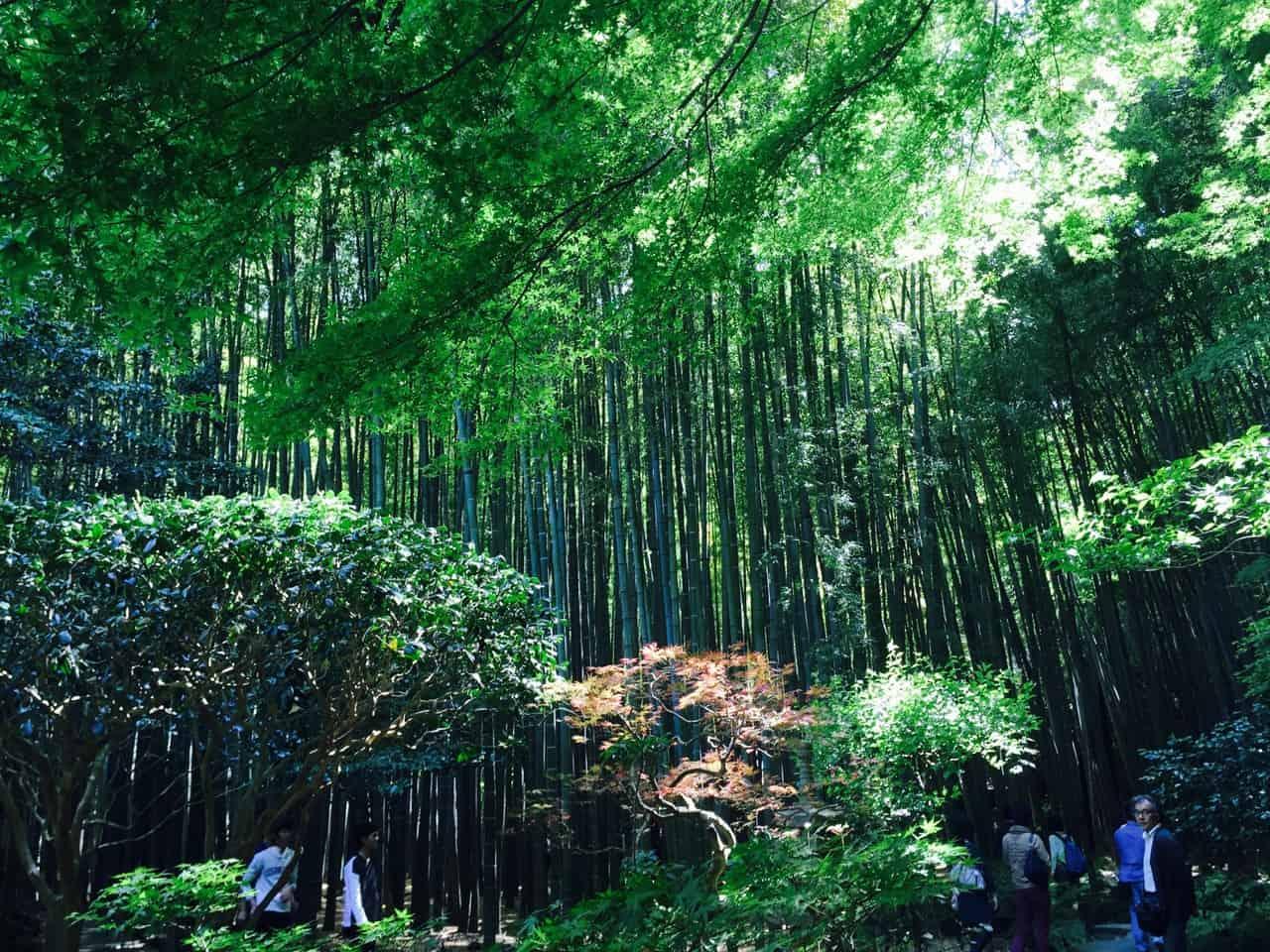 Kamakura, Japon