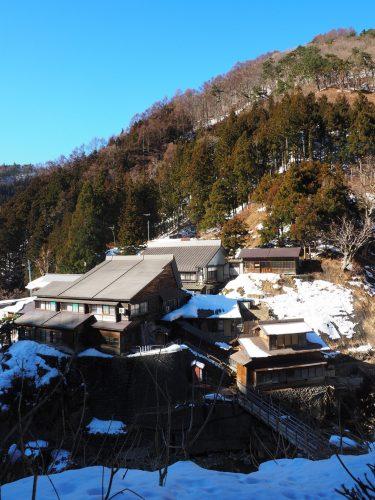 Snow Monkey Park, Macaques japonais, Nagano, Onsen