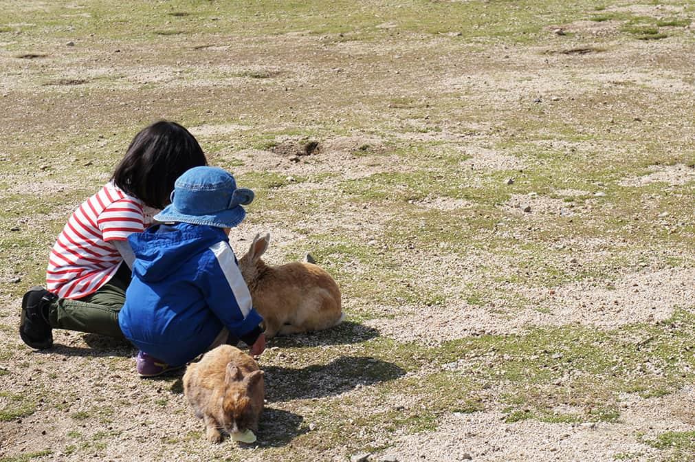 Enfants caressants des lapins sur à Okunoshima
