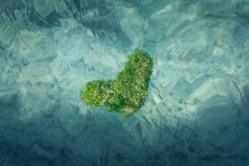 L'eau transparente des plages de Taketomi dans la Préfecture d'Okinawa, Japon