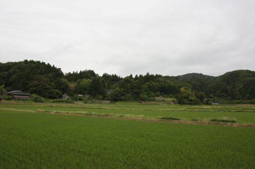 Les environs de la scène de théâtre Nô du sanctuaire Kusakari à Hamochi, sur l'île de Sado au Japon