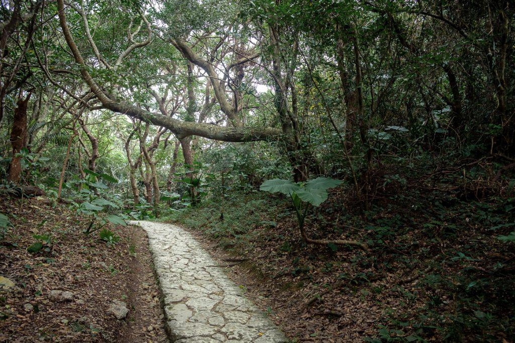Visiter le Seifa Utaki est un véritable cheminement en pleine nature