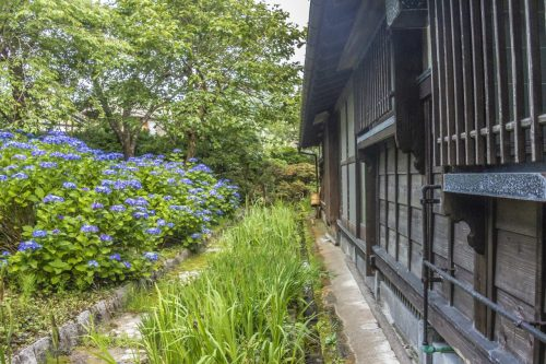 Jardin fleuri de l'auberge Goushikan près de Murakami dans la préfecture de Niigata, Japon