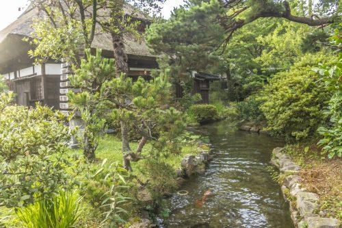 Cours d'eau et carpes de l'auberge Goushikan près de Murakami dans la préfecture de Niigata, Japon