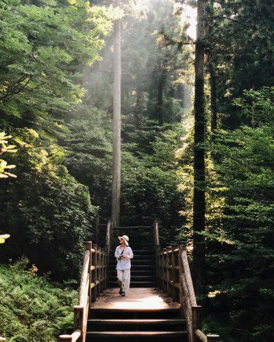 Promenade dans le parc Shinrin près de Toon, Ehime, Japon