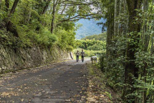 Sur le sentier menant au château de Naegi à Nakatsugawa, préfecture de Gifu, Japon
