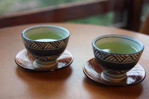 Tasse de thé vert au shukubo Sanrakuso au pied du Mt Daisen, préfecture de Tottori, Japon