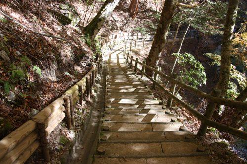 Sentier menant au pont en liane d'Oku Iya, vallée d'Iya, préfecture de Tokushima, Shikoku, Japon
