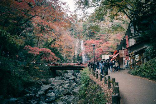 Couleurs d'automne sur les hauteurs de Mino, Osaka, région de Kinki, Japon