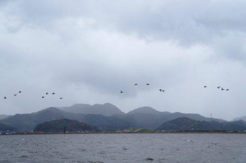 Croisière sur le lac Nakaumi à Yonago, région du San'in, Tottori, Japon