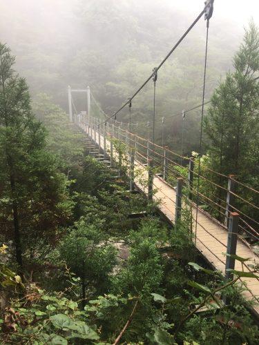 Pont suspendu Satsuki dominant les cimes de la forêt sur l'île de Yakushima, Japon