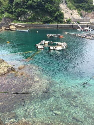 Les eaux turquoises du port de Fukashima