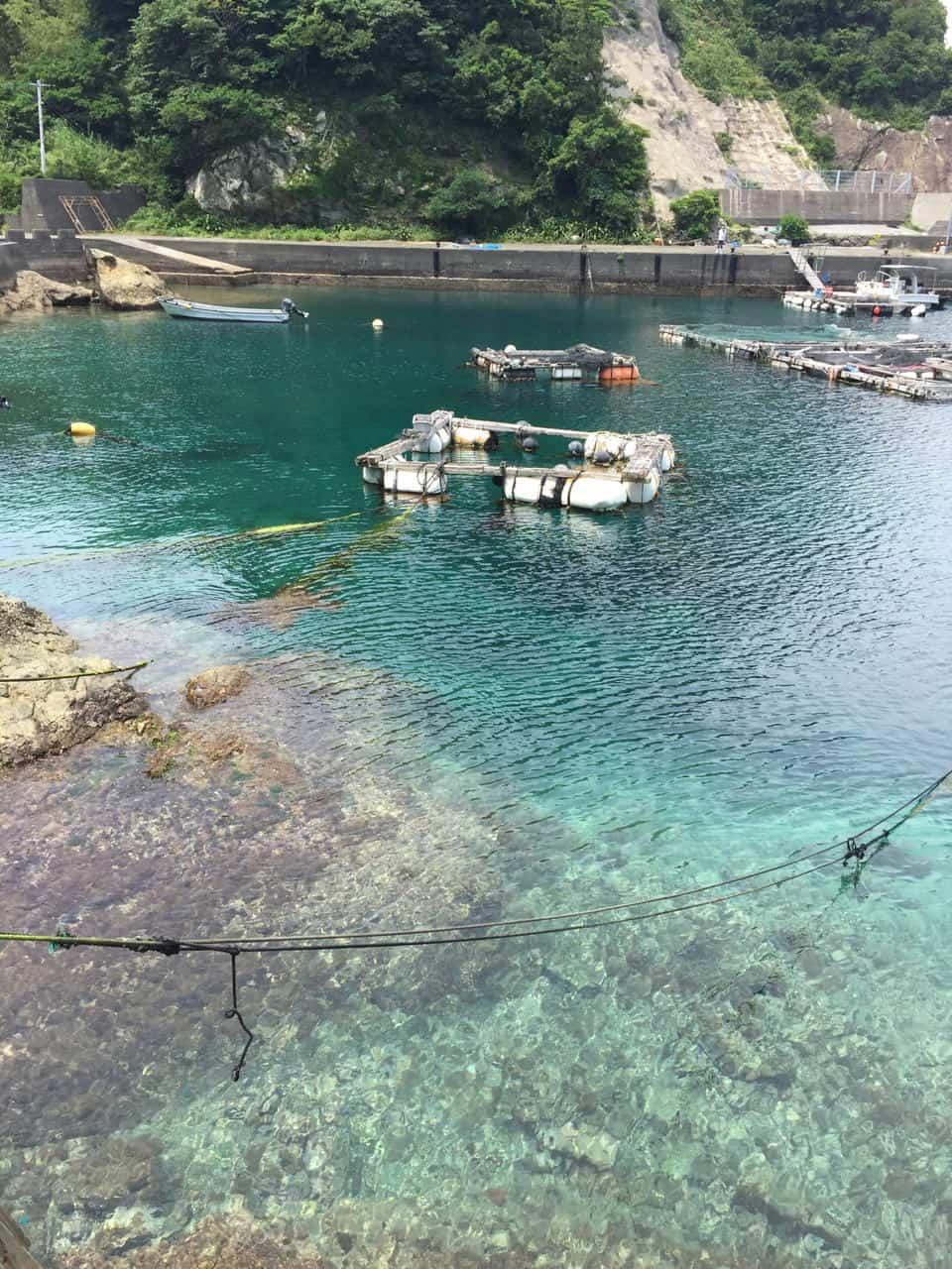 Dans les eaux turquoises de Kyushu à Fukashima et Yakatajima