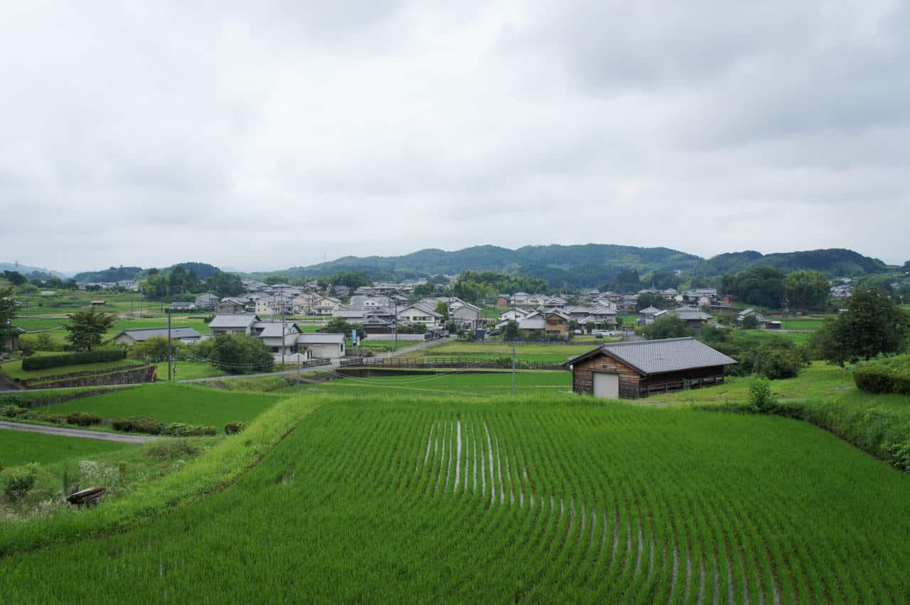 Écotourisme dans le village rural et historique d'Asuka, à Nara