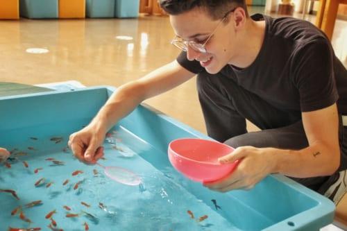 Luca tentant d'attraper des poissons rouges à l'aide de son épuisette en papier
