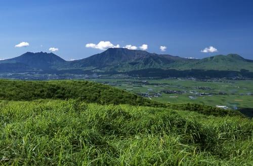 Vue panoramique sur la caldera du mont Aso, derrière un premier plan végétal