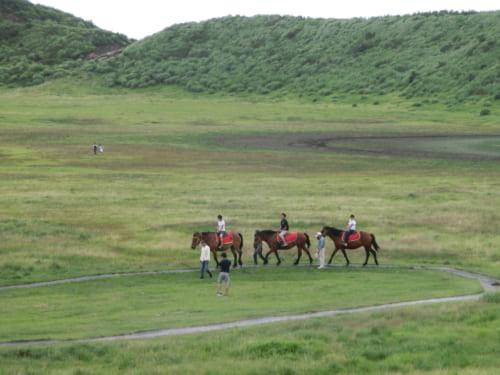 Trois chevaux, dans la caldera du mont Aso