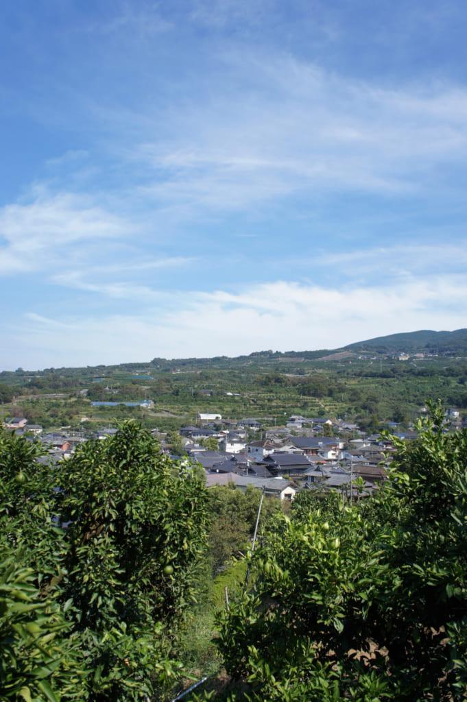 Vue sur le paysage depuis le Mizumoto Orange Garden