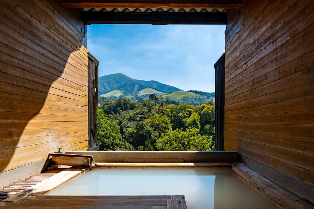 Vue sur le mont Waita depuis l'onsen privé