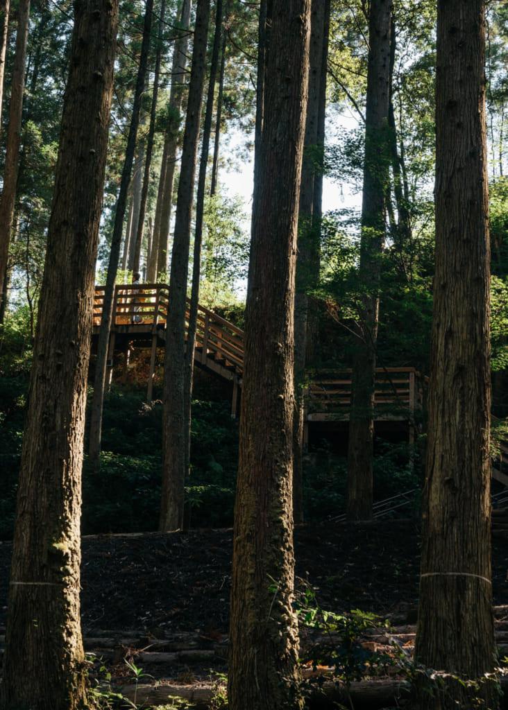 Derrière les arbres, les marches de bois qui mènent aux chutes de Nabegataki