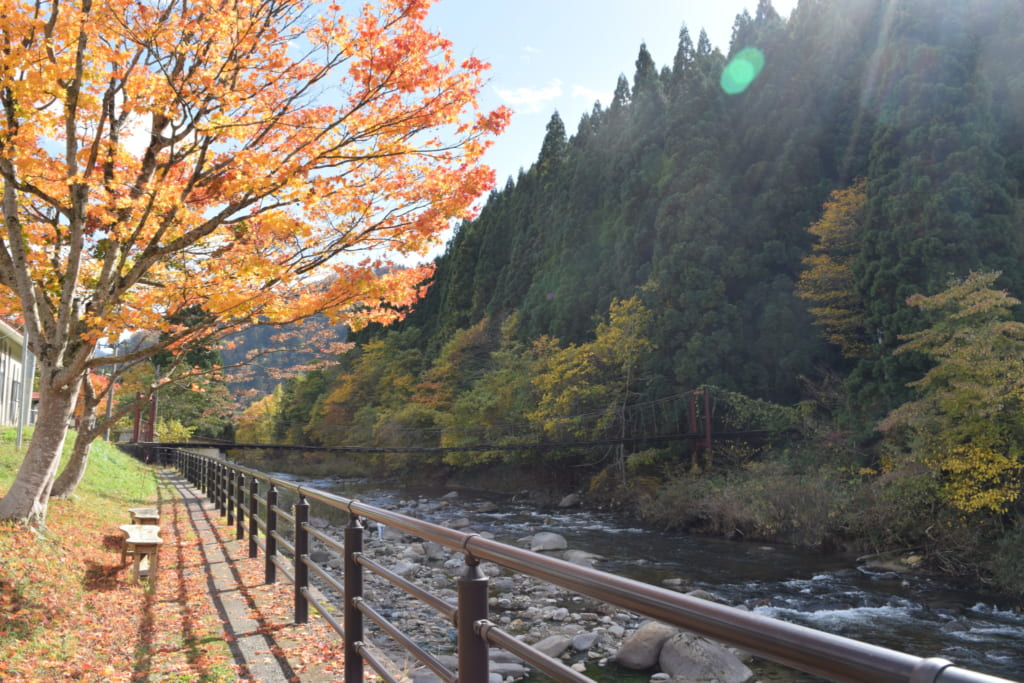 Chemin de randonnée paisible en bord de rivière pour se rendre au Kawara no Yukko