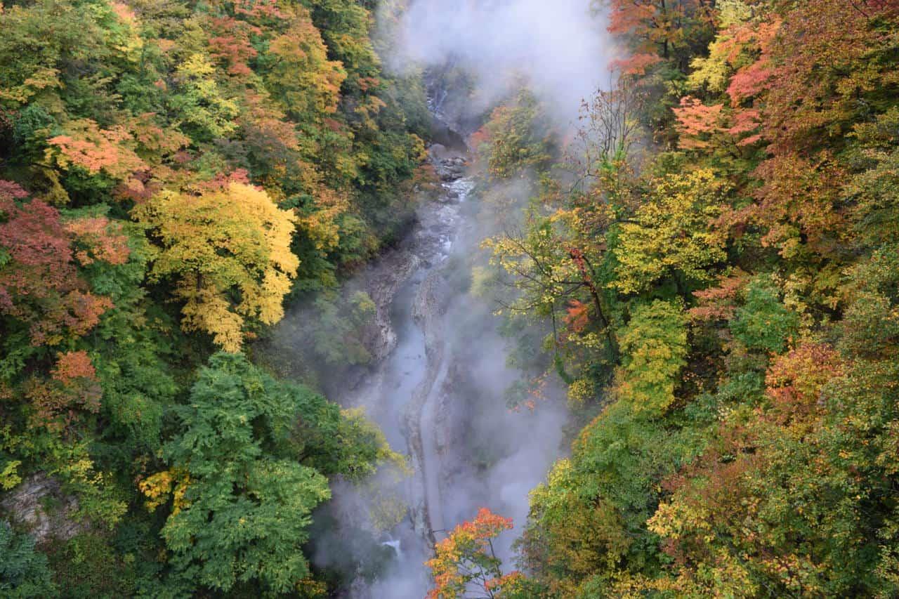 Feuilles d'automne et onsen sauvage dans les gorges d'Oyasukyo