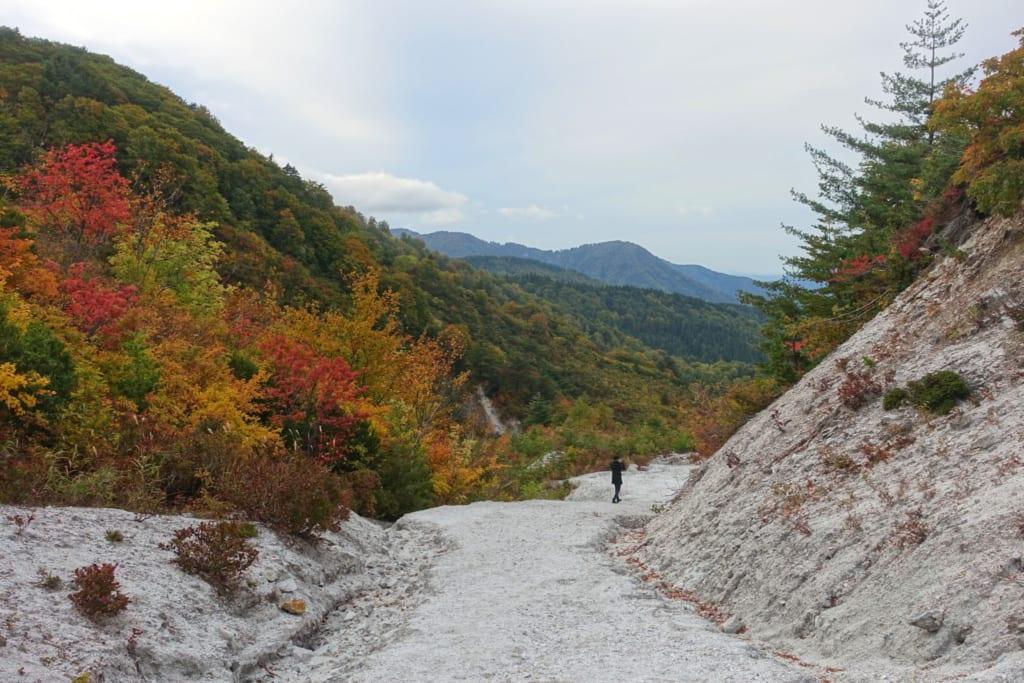 Chemin en pierres blanches du kawarage jigoku au milieu des paysages d'automne de la préfecture d'Akita