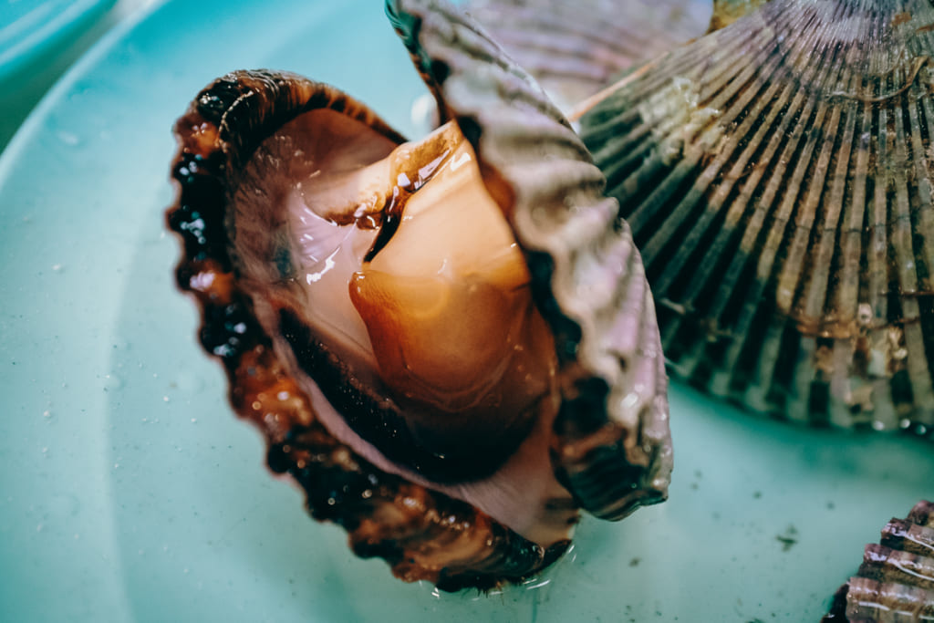 Autre coquillage du restaurant Karatomari Ebisu