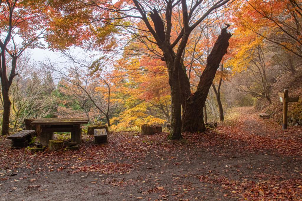 Tables et bancs en bord du chemin de randonnée du Mont Mitake