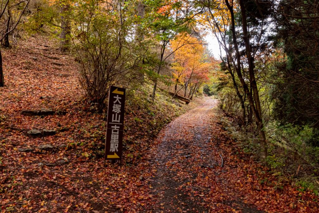 Chemins de randonnée du Mont Mitake recouvert de feuilles d'automne
