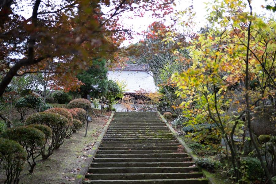 Le jardin japonais du temple Fusai-ji
