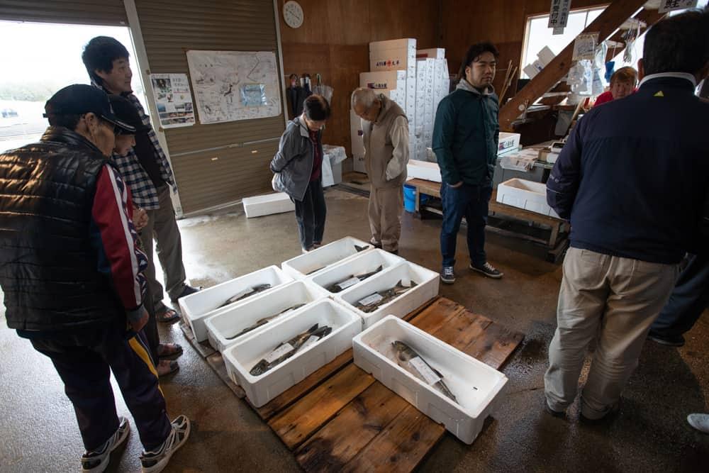 Des saumons tout juste pêchés dans une boutique près de la rivière Miomote à Murakami