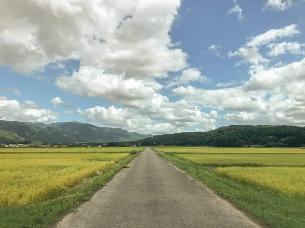 route de campagne au milieu des champs de Sekikawa