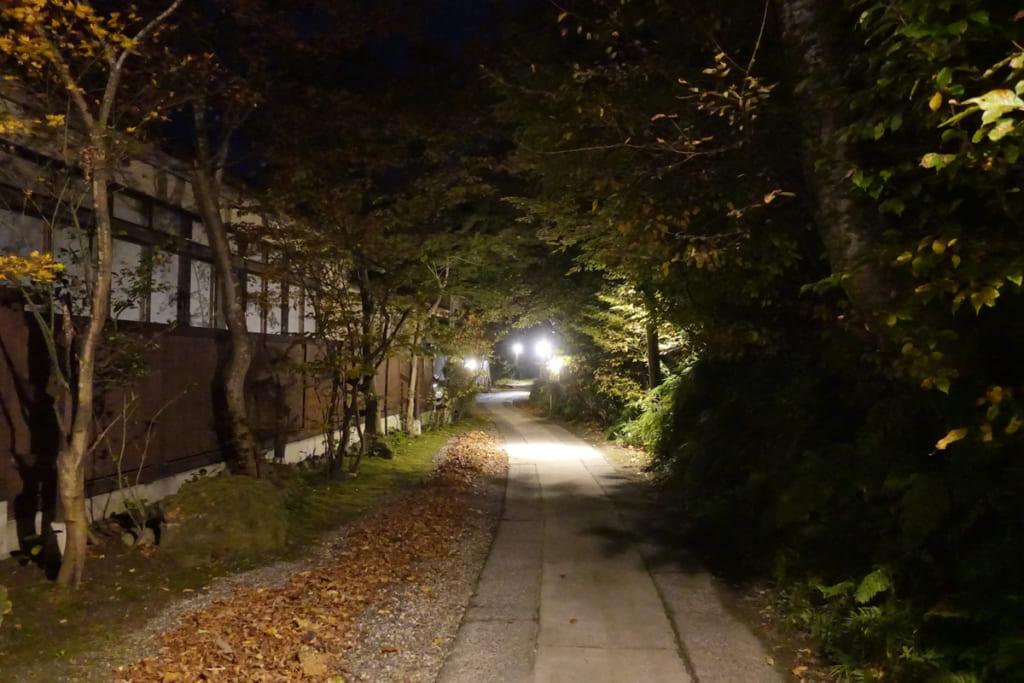 Les bâtiments de Takanosu Onsen de nuit