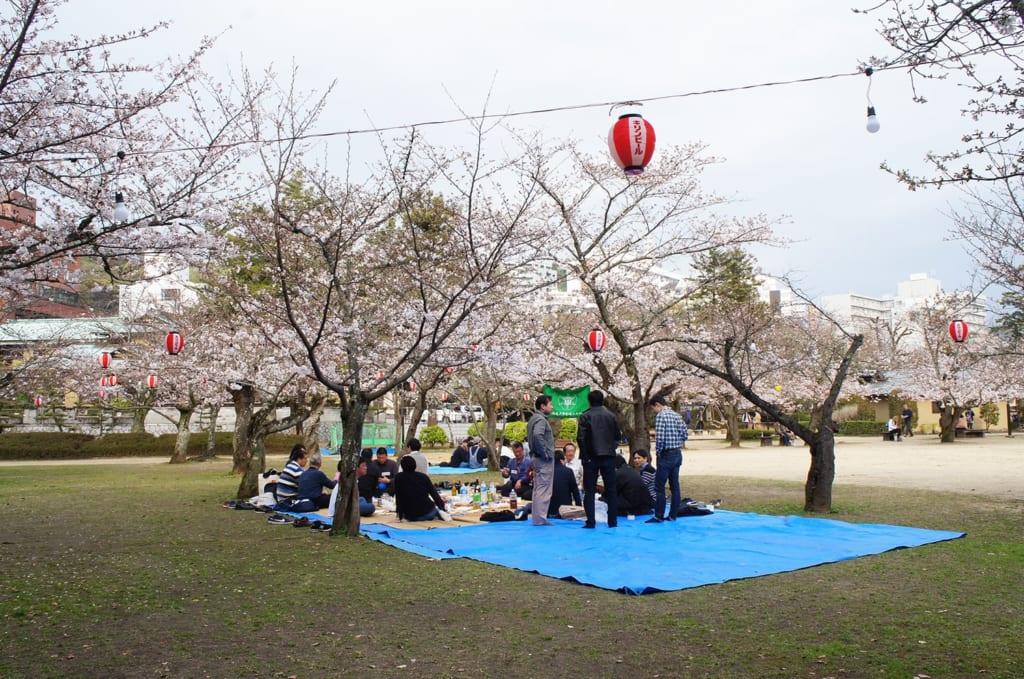 Salarymen japonais fêtant le hanami à Matsuyama