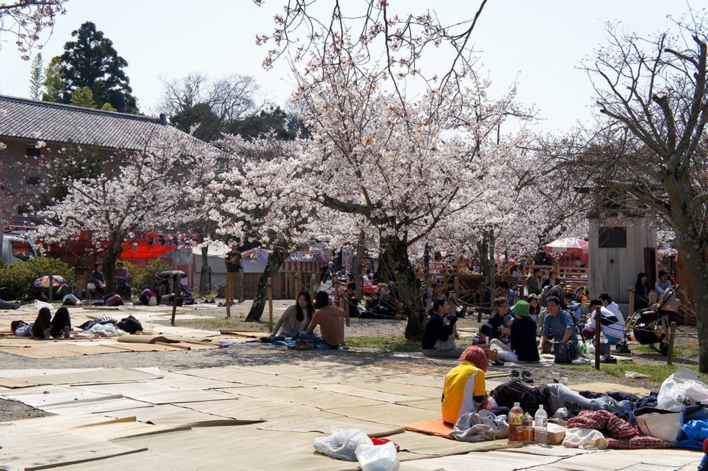 Places réservées pour le hanami dans le parc Maruyama à Kyoto